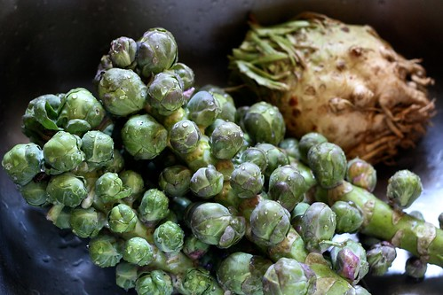 Brussles Sprouts on the Stalk & Celeriac by Chiot's Run