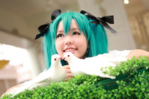 Yume_no_Miku_13