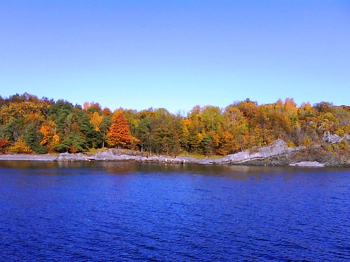 Amazing fall foilage