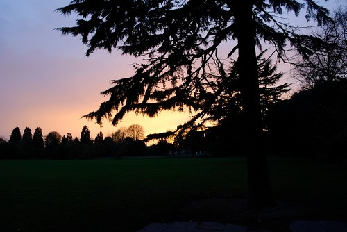 Sunset at Charlton Park