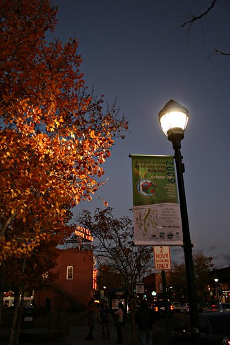 foliagebylamplight101709