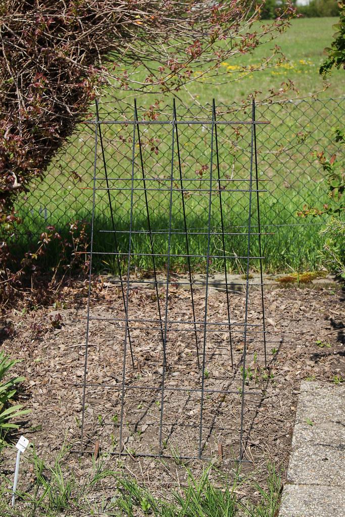 Garten Rankhilfe Rankhilfe Erset Obelisken Garten Pflanzsttze With Garten Rankhilfe Elegant