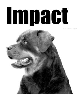 grayscale rottweiler, captioned Impact in Impact font