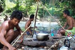 Regenwaldküche