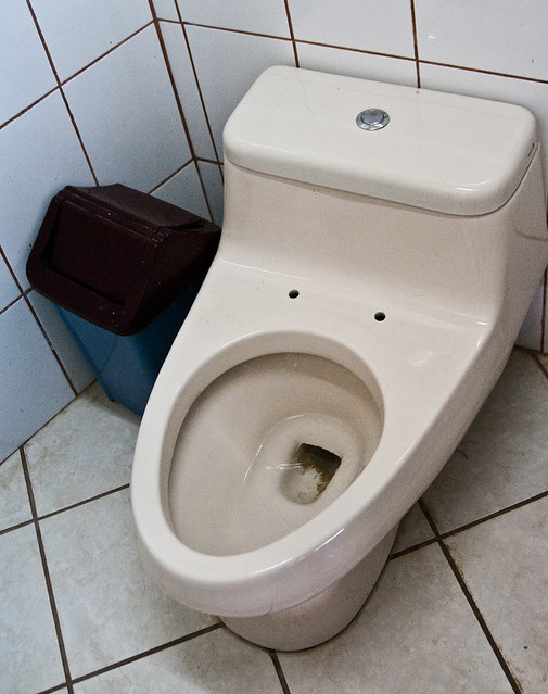 One way to solve the eternal toilet seat up/down debate...