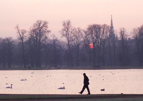 Hyde Park Morning