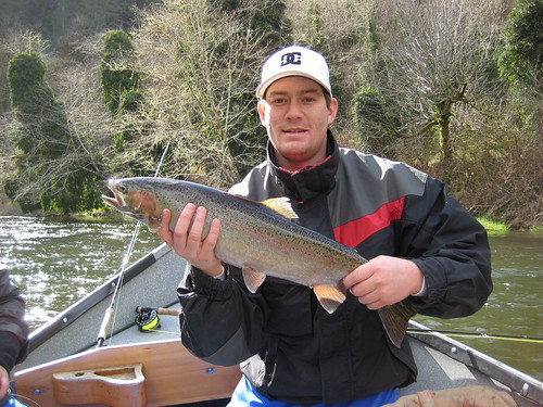 Hatchery Winter Steelhead