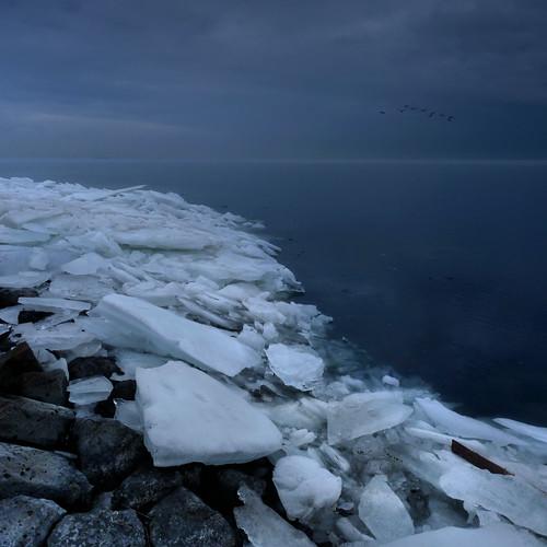 Dutch winter on its last breath