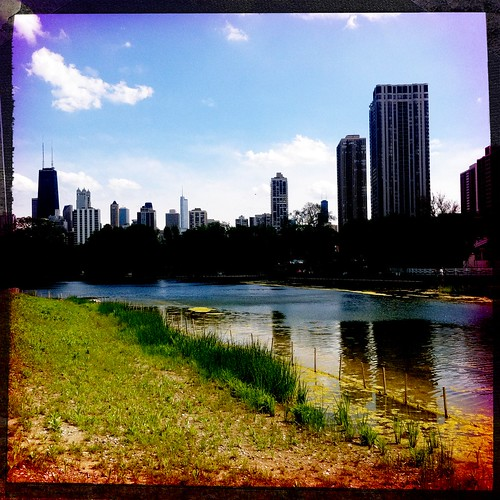 Urban Oasis in Lincoln Park
