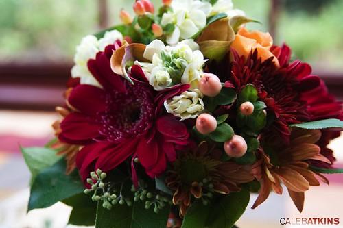 Flowers at Raspberry Plain