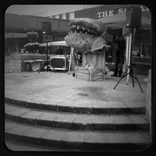 Horror in Beeston Square
