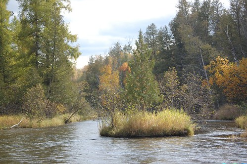 North Branch in the Fall
