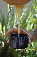 Beija-Flor Naturals Agave Aloe Polisher