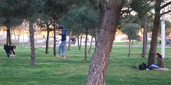 Tightrope walking in park