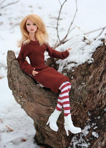 Poppy Poses On A Stump