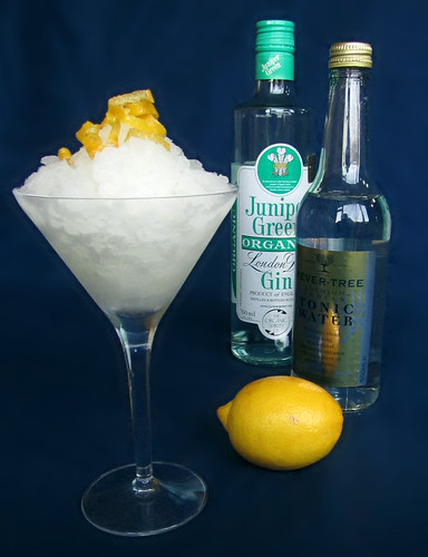 Gin & Tonic Granita