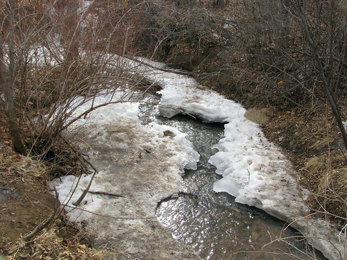 Water flowing through frozen stream