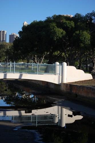 reflecting Ala Moana Park