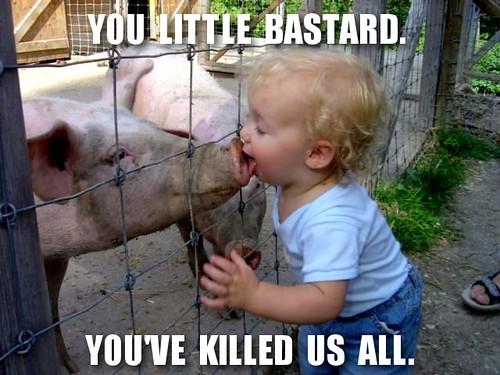pig kid