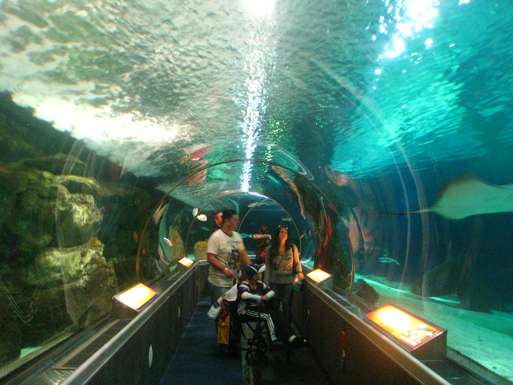 Mall of America's Aquarium