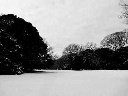 Snow in Tokyo
