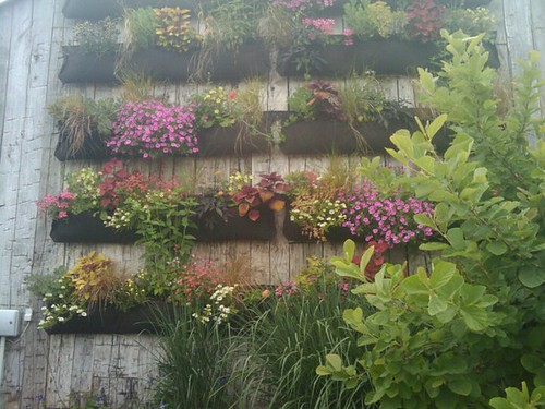 The Terrain Wall Pockets of plants