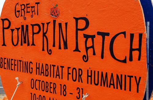 Great Pumpkin Patch