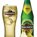 Magnerspear