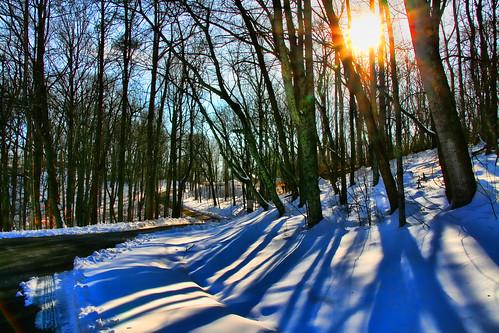 Evening Shadows on Snow