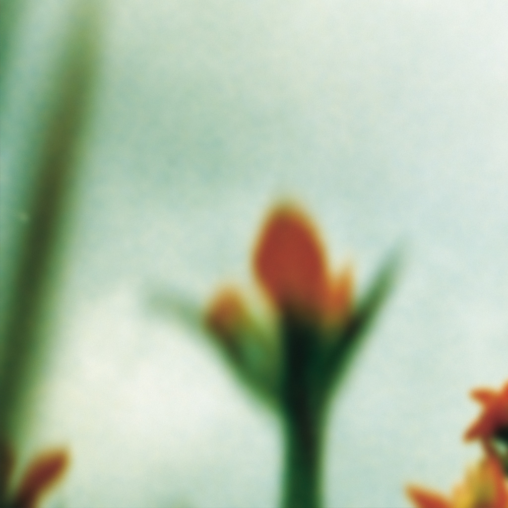 For iPhone wallpapers, download the NIN:Access iPhone app at access.nin.com