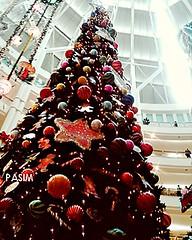 KLCC Christmas 2009 (9)