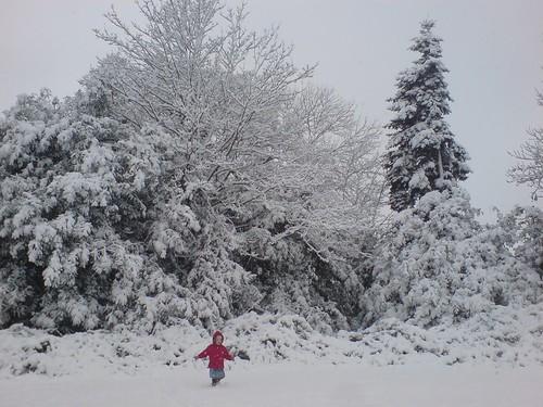 Ffion in the snow