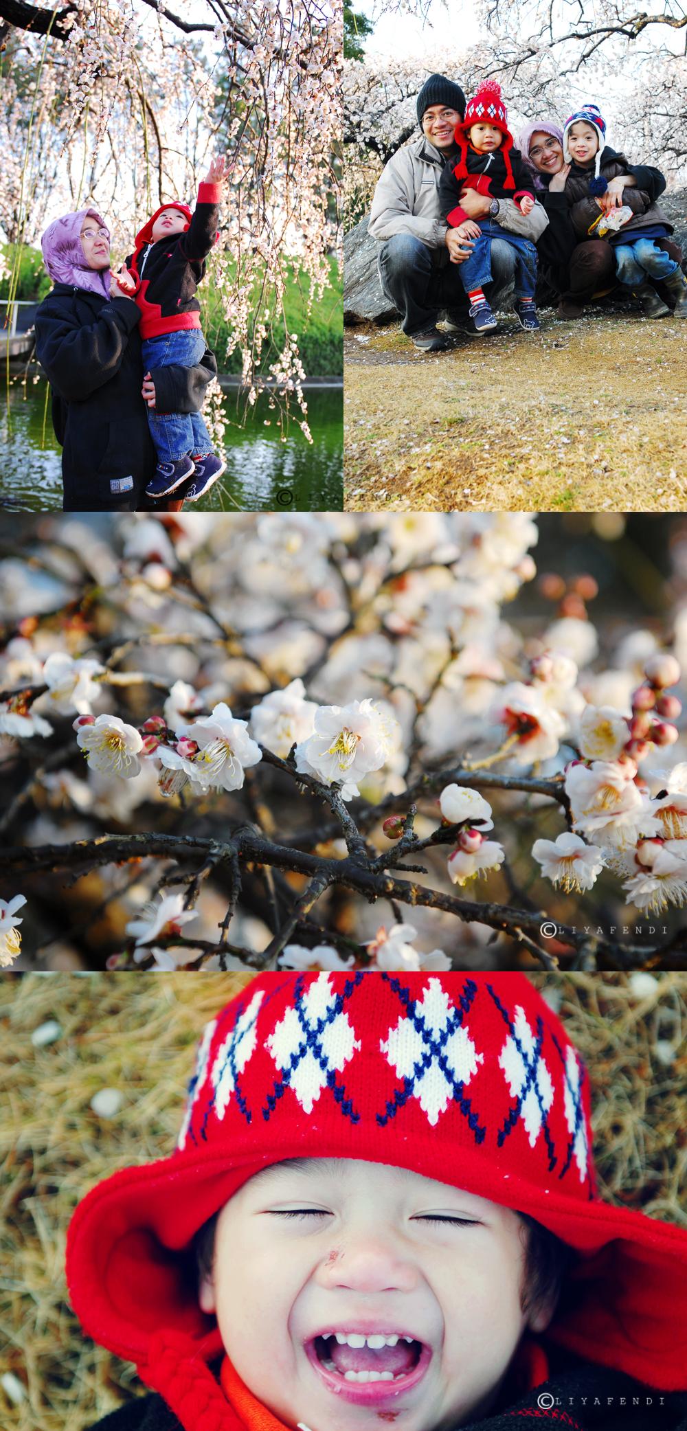spring end Feb 2010@matsumi park