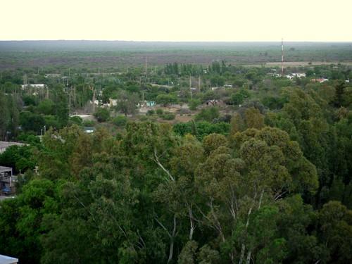 Vista de Valle Fértil 2 (by morrissey)