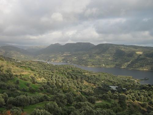 Galia - Magarikari