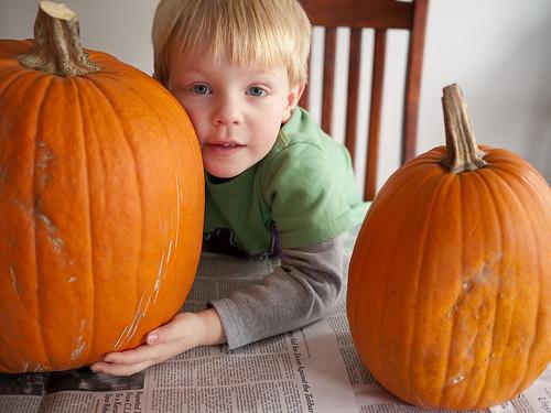 A Boy and his Pumpkins