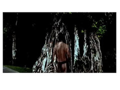Taotaomo'na Returns to the Tronkon Nunu (Bayan Tree)