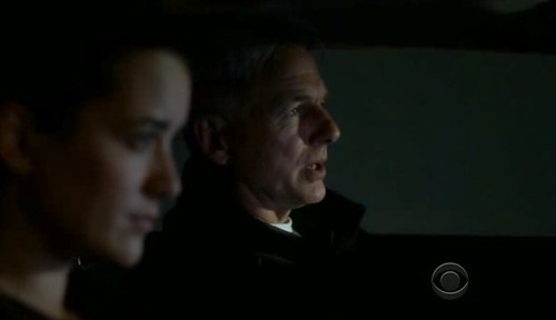 Ziva and Gibbs © CBS
