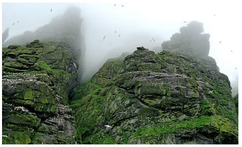 St Kilda by Pascal Wyse