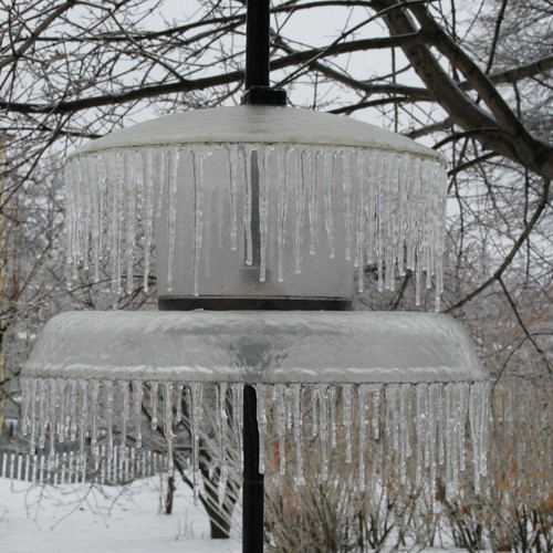 Ice storm :: bird feeder