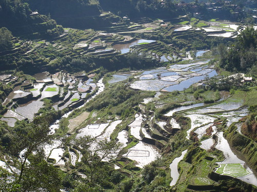 Banaue Rice Terraces, Cordillera Mountains, North Luzon, Philippines