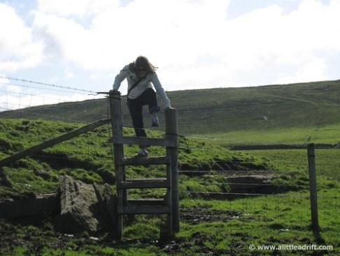 Cow pasture gook