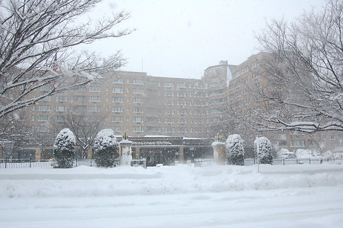 The Shoreham--My Hotel