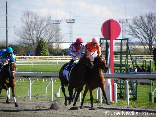 2010 Ashland Stakes