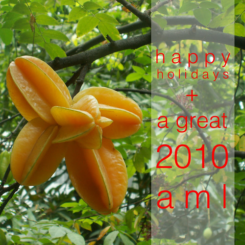 happy holidays + a great 2010!
