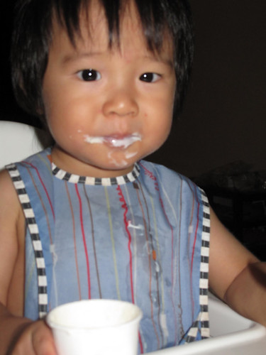 Yoghurt 5