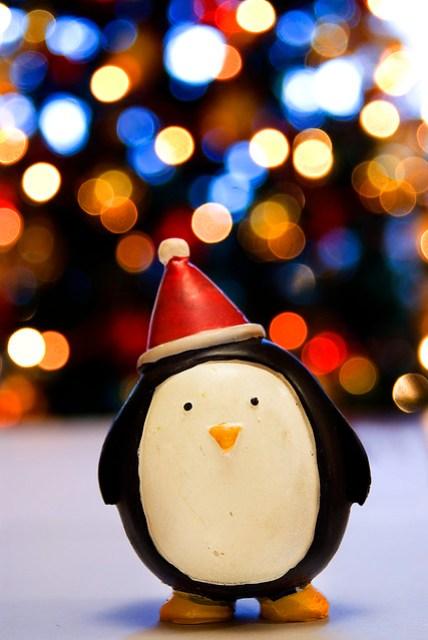 HAPPY CHRISTMAS BOKEH! XXX