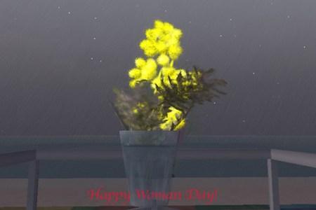 mimosa 8 marzo 2010