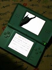 破壊されたNINTENDO DS