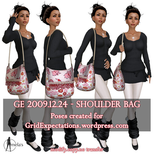 GE 2009.12.24 shoulder bag